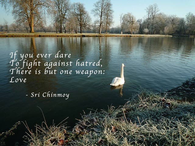 quotes about hate. Quotes by Sri Chinmoy. hate